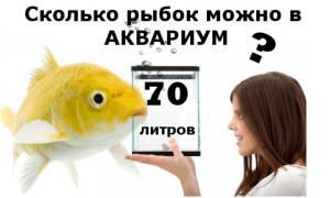 Сколько можно рыбок в аквариум 70 литров
