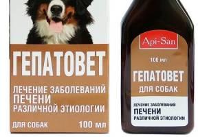 Гепатовет: инструкция по применению для собак