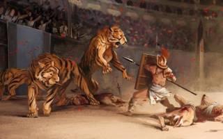 Как тигры жили и живут в неволе: история взаимоотношений с людьми