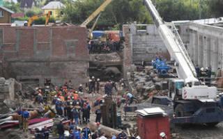 Маленьких щенят достали из-под завалов здания в Новосибирске