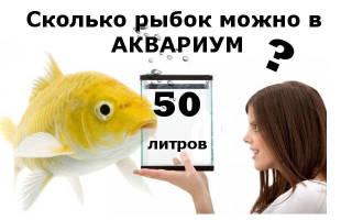 Сколько можно рыбок в аквариум 50 литров