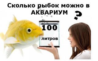 Сколько можно рыбок в аквариум 100 литров