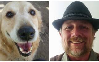 Почтальон и собака, любящая получать письма