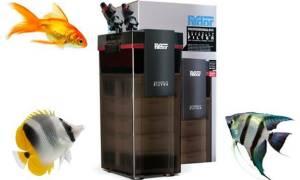 Все фильтры Hydor: обзор, отзывы, где купить?