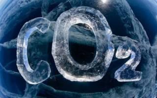 Подачи СО2 в аквариум: способы, виды, нюансы