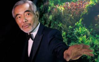 Такаши Амано: фото, концепция, биография