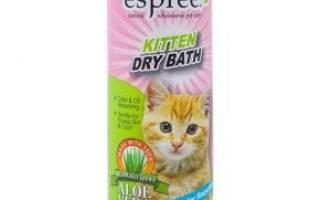 Сухой шампунь для кошек: 18 брендов с ценами, как пользоваться