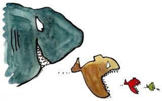 Агрессивные аквариумные рыбки: черный список негодяев