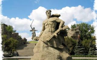 Зоомагазины Волгограда