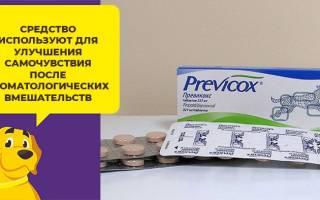 Превикокс: инструкция по применению для собак