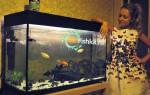 Смены воды в большом аквариуме, как уменьшить число подмен?