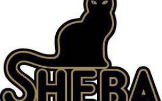 Корм для кошек Шеба (Sheba): класс, состав, полный обзор, замена