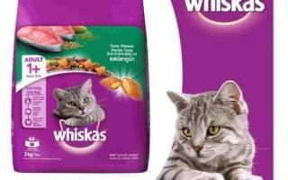 Корм Вискас (Whiskas) для кошек и котят: состав, польза и вред, обзор