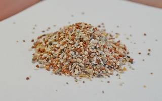 Сепия — минеральный камень для попугаев