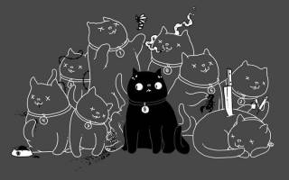Почему у кошек 9 жизней, мифы и легенды, откуда пошло выражение
