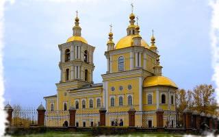 Зоомагазины Новокузнецка