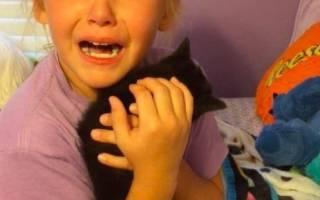 История о девочке, которая не сдерживает слез радости при виде котенка