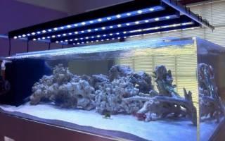 Освещение аквариума видео-обзор
