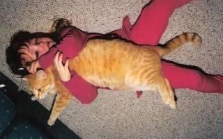 История дружбы девочки и кота длиной в 19 лет