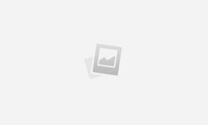 Документальный фильм от от BBC Дневник кота: мир кошачьим глазом